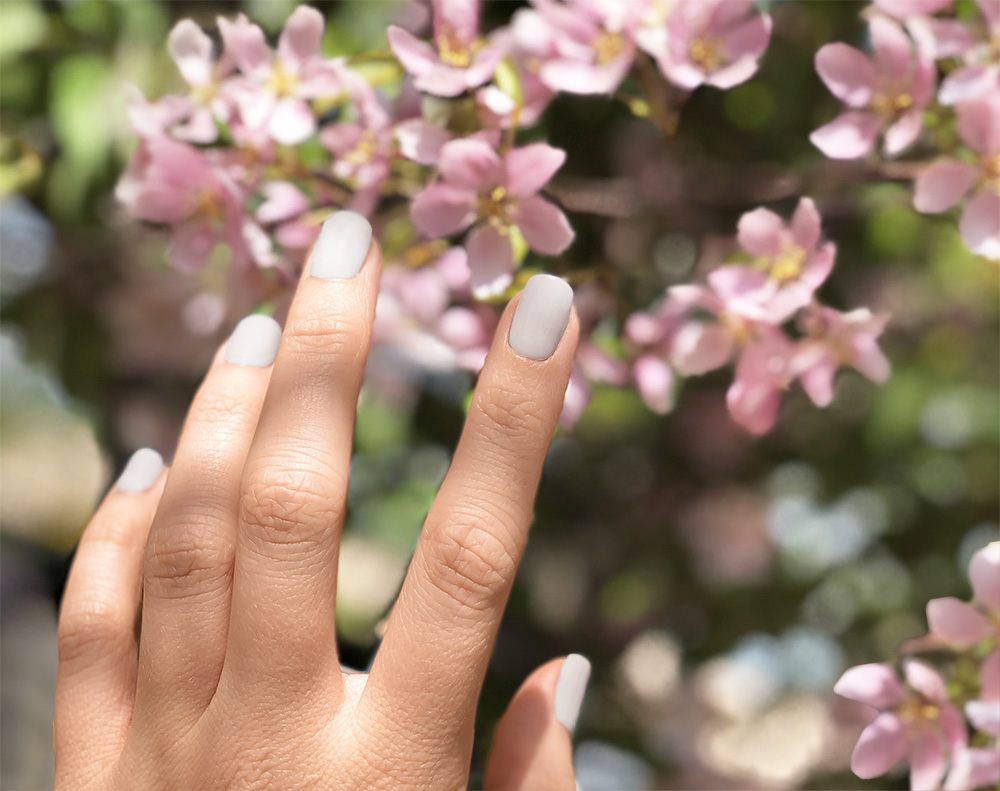 [Image Description: A left hand, mails painted a matte grey, held against a pink flower tree.]