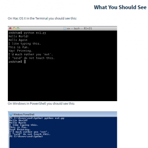 The website actually shows you what the code you enter might look like as you run it tthrough the Python terminal