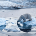 ASK A SCIENTIST: What really is climate change?