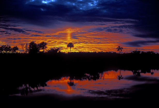 beautiful places, everglades