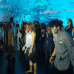people dressed up in Halloween costumes, in front of Dubai Mall aquarium. A girl and guy dressed as zombies in front.