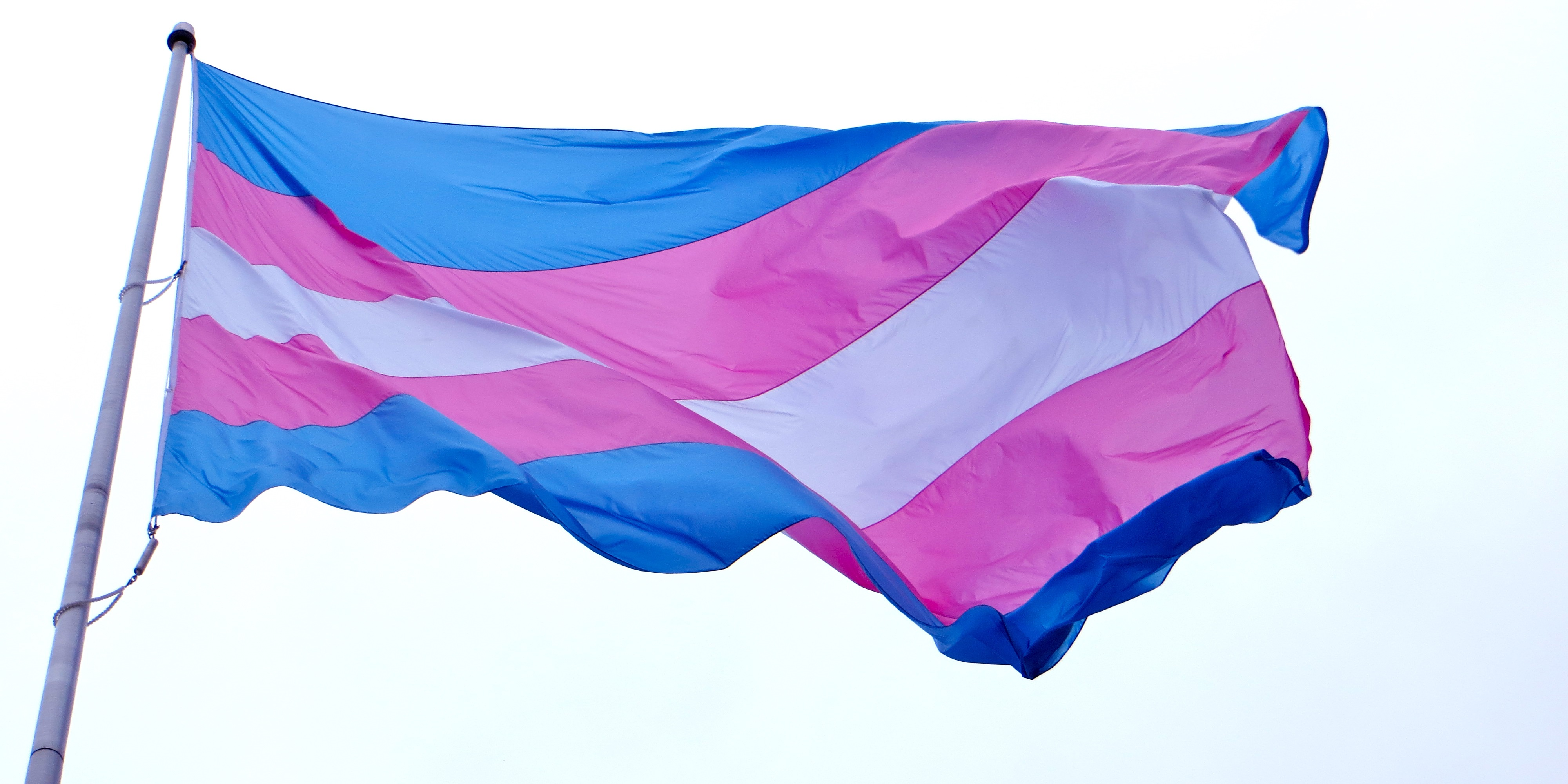 A photograph of the transgender pride flag blowing in the wind. It has white, pink and blue stripes.