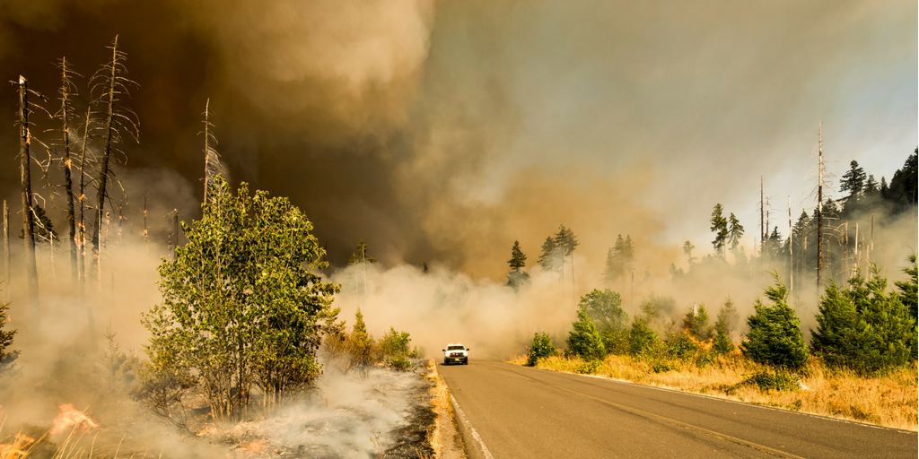California's using modern-day slavery to fight wildfires – and it's totally legal