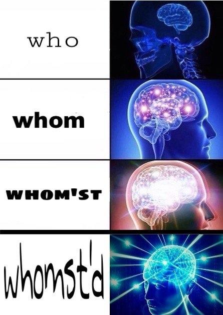 """[image description: expanding brain meme showing illustrated profiles of a human head with the brain increasingly illuminated in 4 frames; text accompanying each frame reads """"Who, whom, whom'st, whom'st've""""]"""