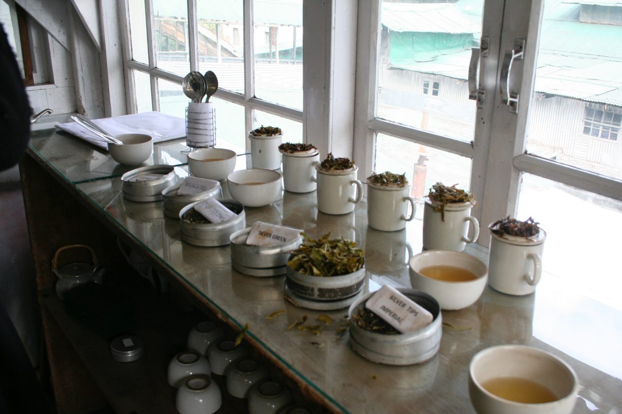 Six ceramic cups sit on a counter with the tea leaves sitting on the cups upturned lids. In front are cups of tea and paper signs with their names on them.