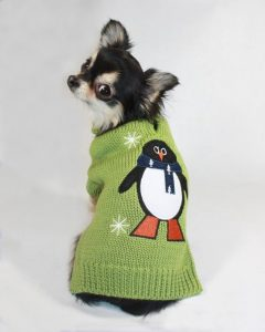 A dog wearing a sweater with a penguin on it.