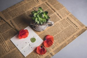 Photo from above of a succulent planted in a mug. Next to it is an invited sealed with a green wax seal that has a poppy flower resting on top. A few petals are scattered to the right