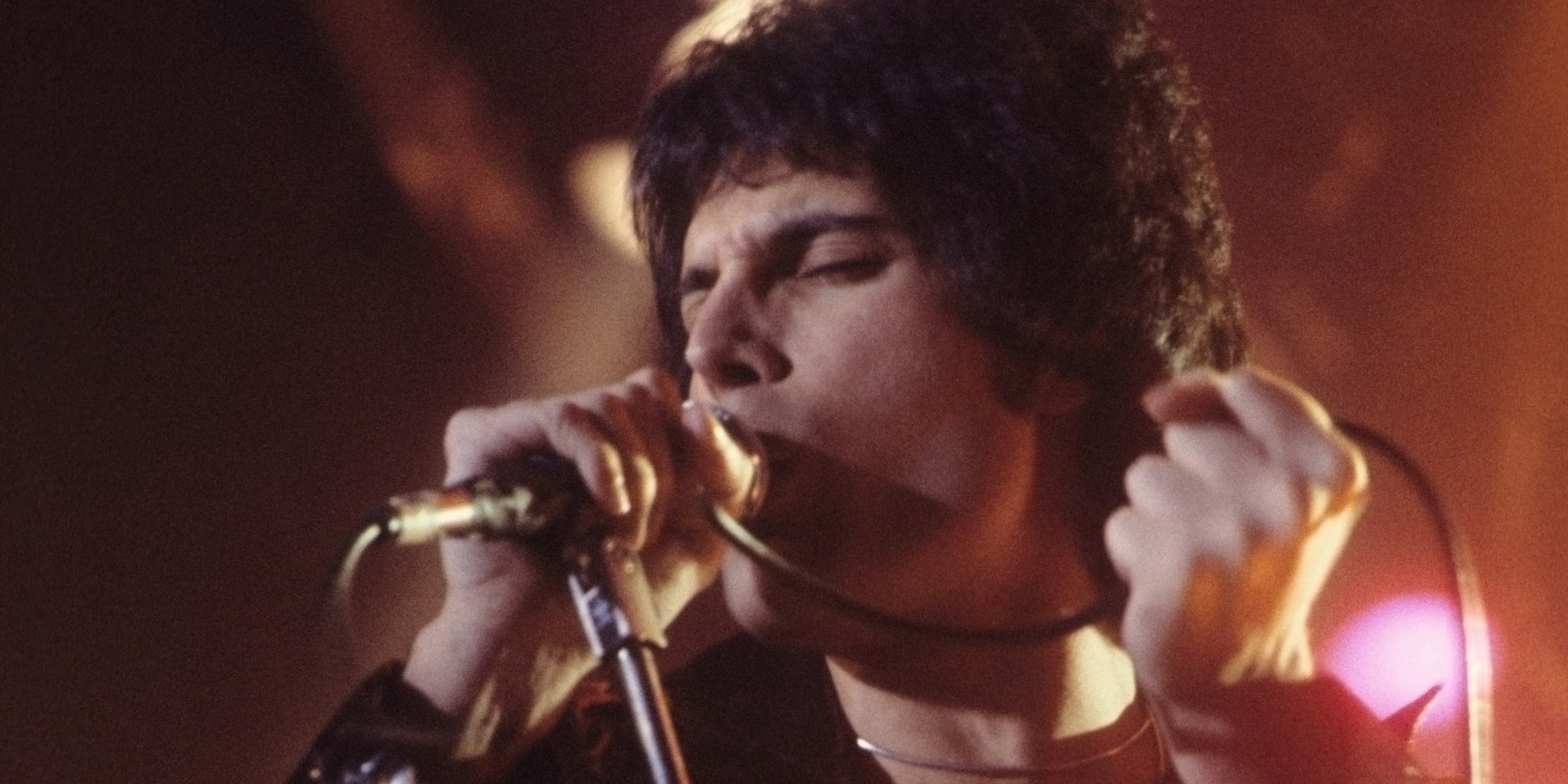 [Image description: Freddie Mercury, a man with curly hair, sings into a microphone with stage lighting around him.]
