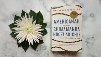 """Americanah"" made me question my whiteness"