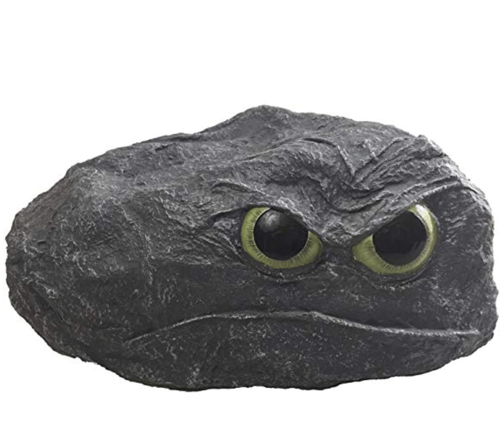 A grumpy looking rock with green googly eyes.