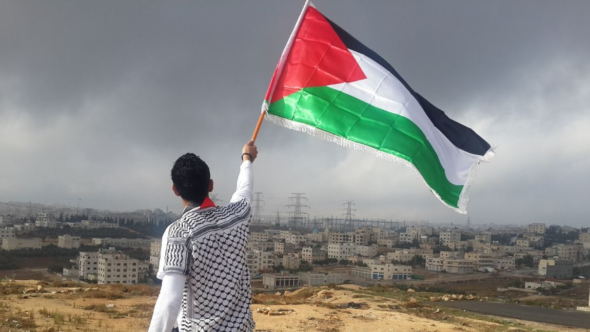 A man stands with his back to the camera, waving the Palestinian flag.