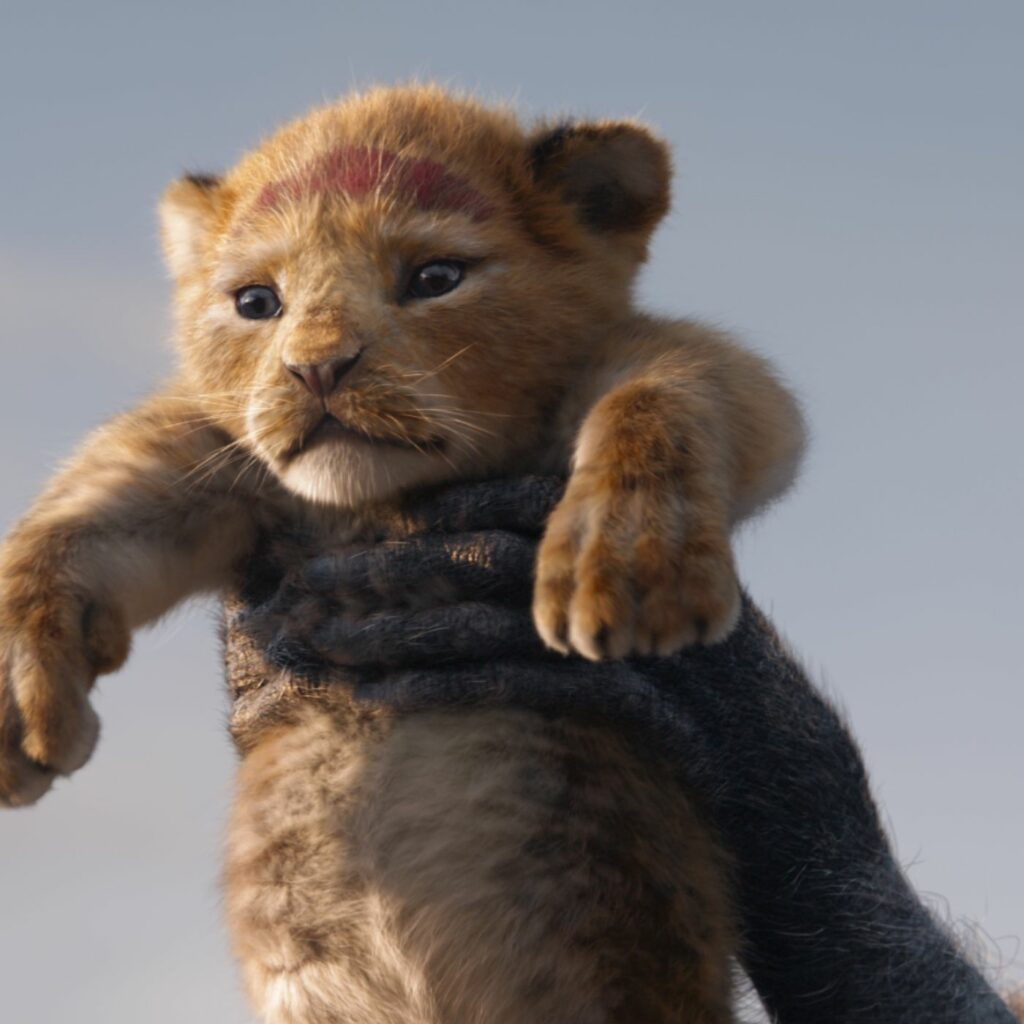 """[Image Description: photo of baby Simba from """"The Lion KIng""""] via Disney."""