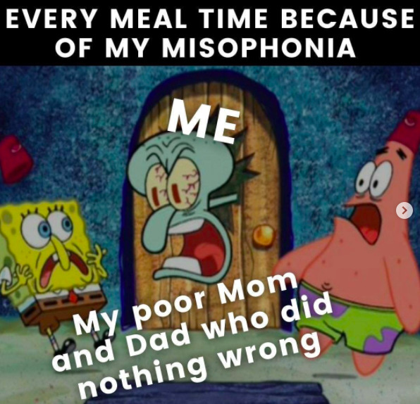 meme titled 'every meal time because of my misophonia', showing squidward glaring at spongebob and patrick, who are labelled 'my poor mom and dad who did nothing wrong'