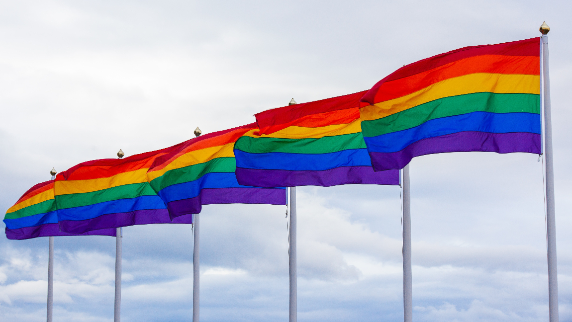 [Image description: Gay pride flags flutter against a cloudy sky.] Via Unsplash