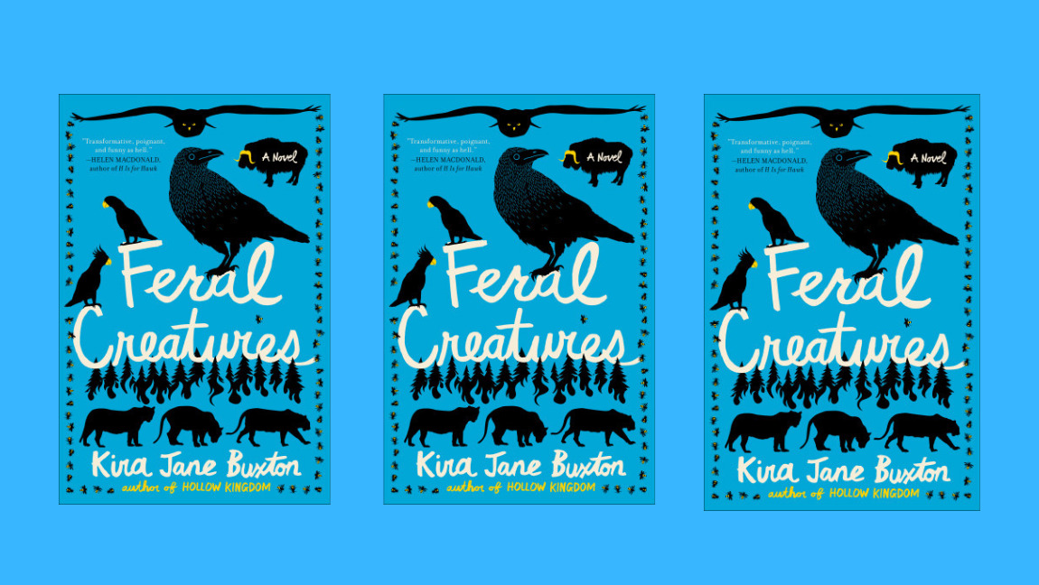 The cover of 'Feral Creatures' by Kira Jane Buxton