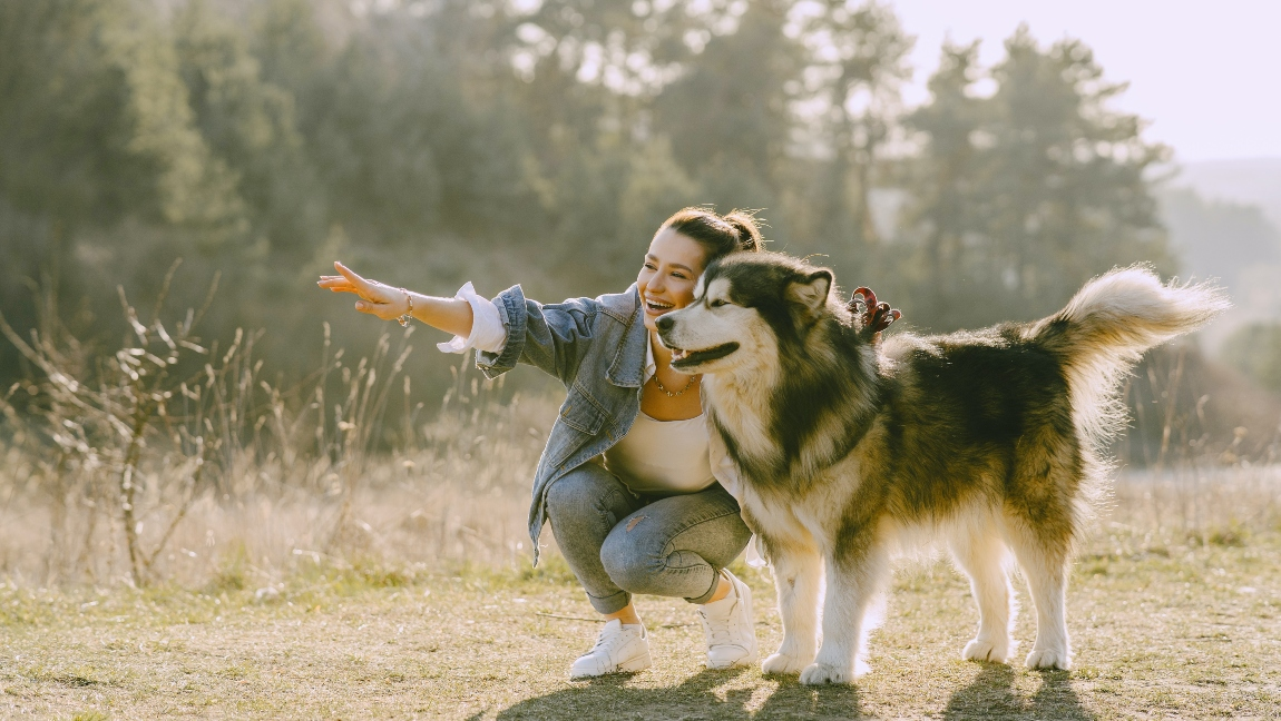 A woman hikes with her husky on an outdoor trail
